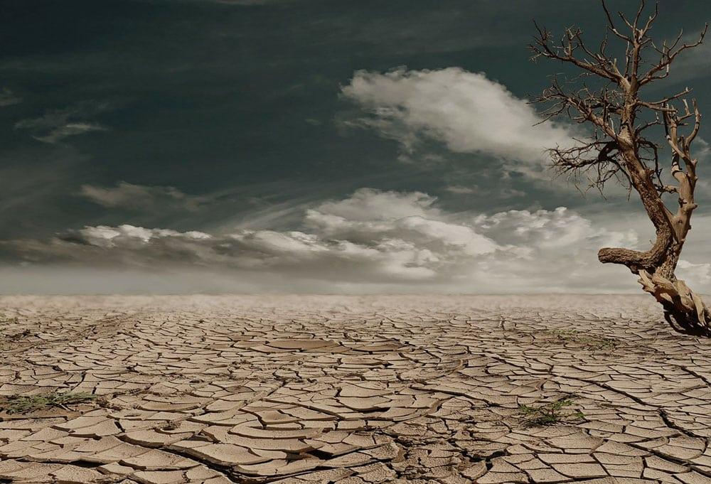 a barren desert landscape